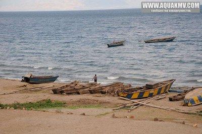 Kigongo, Uvira, Kivu, RD Congo - large.60239073.jpg.2fc2c9f484dbba90c9cc3166e97ea8bb.jpg
