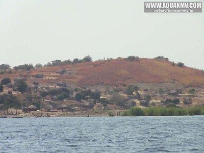 Crocodile island - large.87567581.jpg.d543007882d373ad0baf6d846592da52.jpg