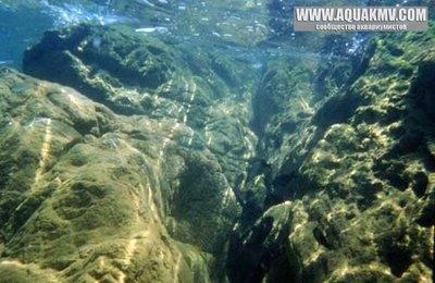 Озеро Танганьика в Африке - biotope-tanganyika-f.jpg