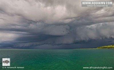 Maswa - large.thunderstom_approaching_maswa.jpg.2259c1acb0a8a7c0d76dad3bcb3d43de.jpg