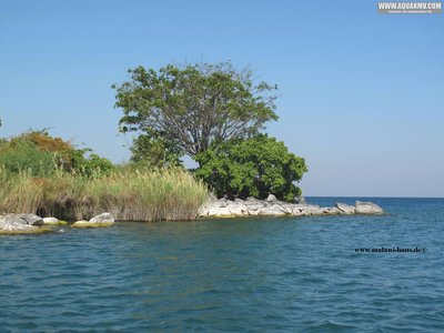 Nkholongue Mosambik Lake Malawi  - 1796031_882017818491954_2420610866843425620_o.jpg