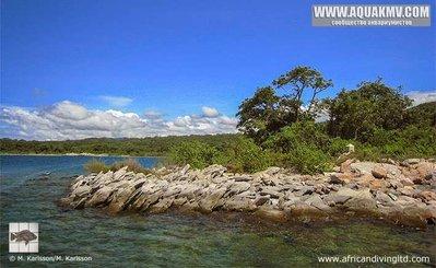 Mabilibili Bay - large.south_border_mahale_mountains_nationalpark.jpg.8666c44cc2b3a904a00ea3d2d140a004.jpg
