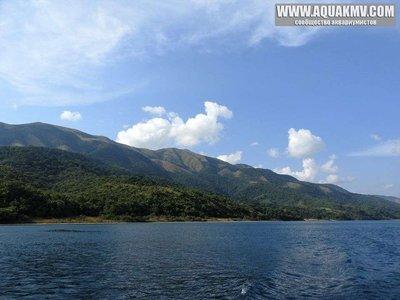 Gombe Stream National Park - large.13445327_10154289283747028_8259001288984864594_n.jpg.98a4dbe370bafee4826d3f8be32ffb1f.jpg