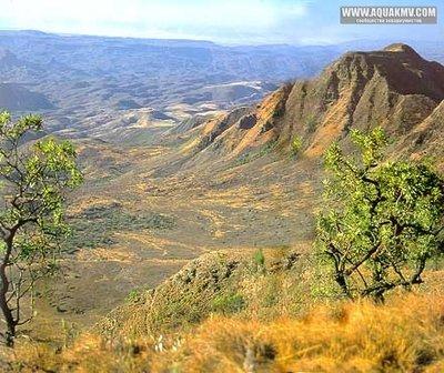 Озеро Танганьика в Африке - IMG_1750.JPG